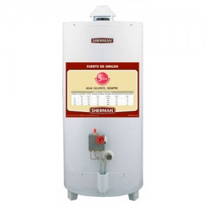 Termotanque 120 Lts Gas Natural Superior