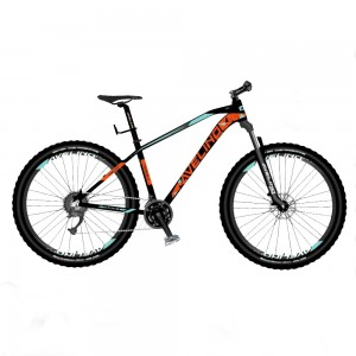 Bicicleta Mountain Bike R29